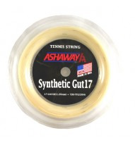 Synthetic Gut 17